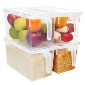 Caixas Organizadoras Transparente Alimentos Opiniões E Comparação S Preço S Aqui