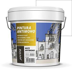 Você Está Procurando O Melhor Preço Para Comprar Pintura Blanca Interior Antihumedad Y Antimoho Oferecer Aqui