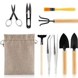 Kit Jardineria Interior Opiniões E Comparação Preço S Aqui
